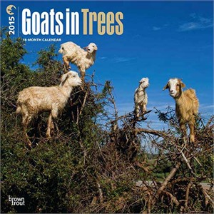 goats-in-trees-calendar-13218